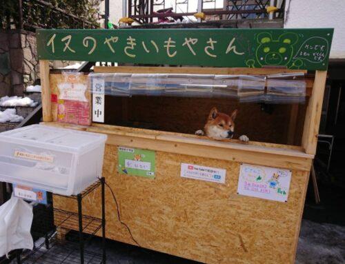 Il cane venditore di patate dolci a Sapporo City