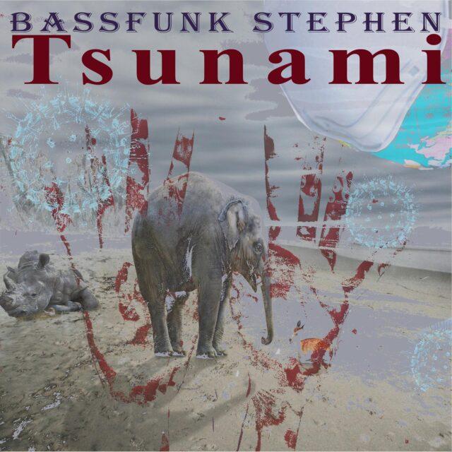 bassfunkstephen-tsunami-singolo